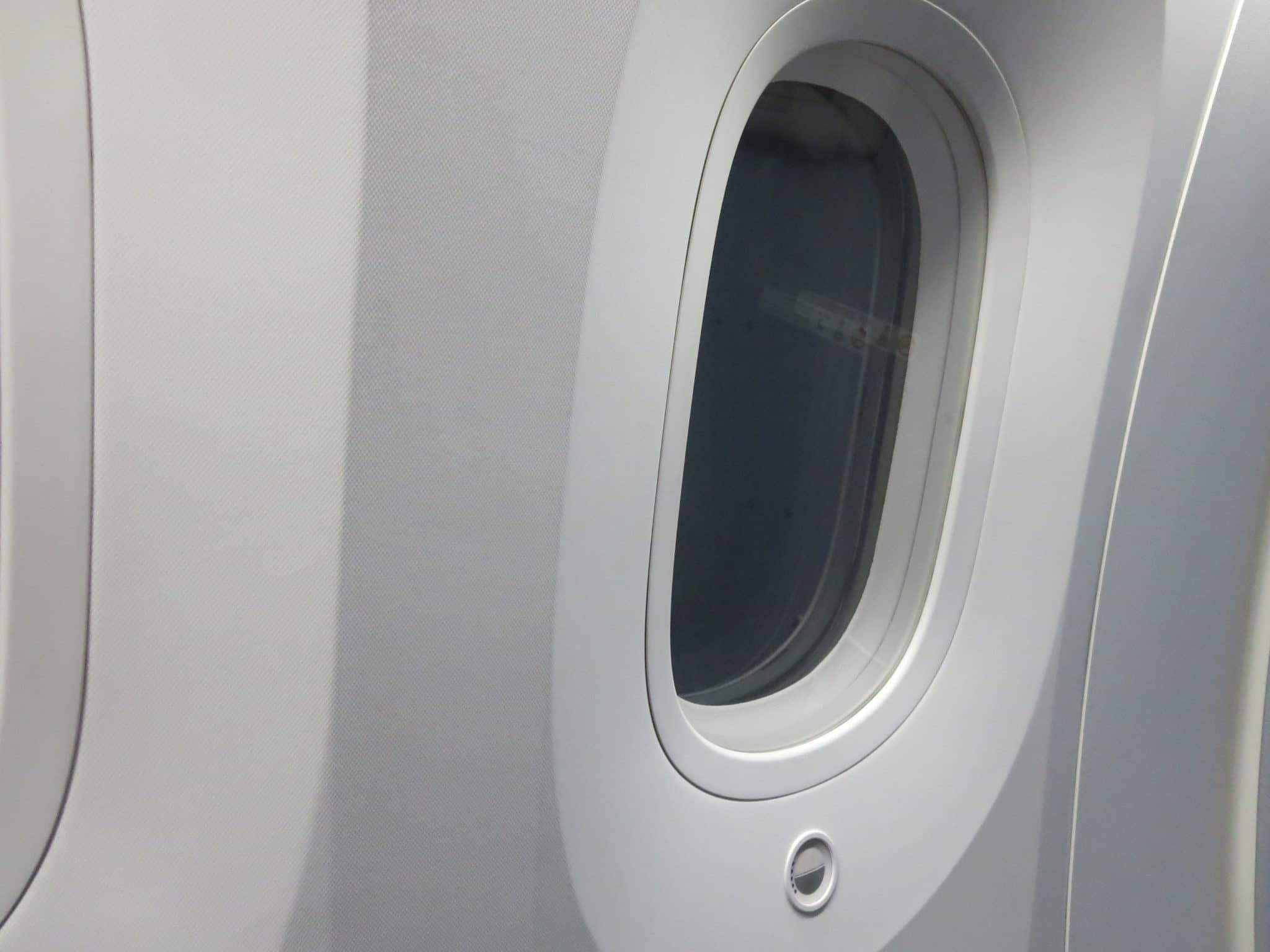 ANA Business Class Boeing 787-8 Fenster