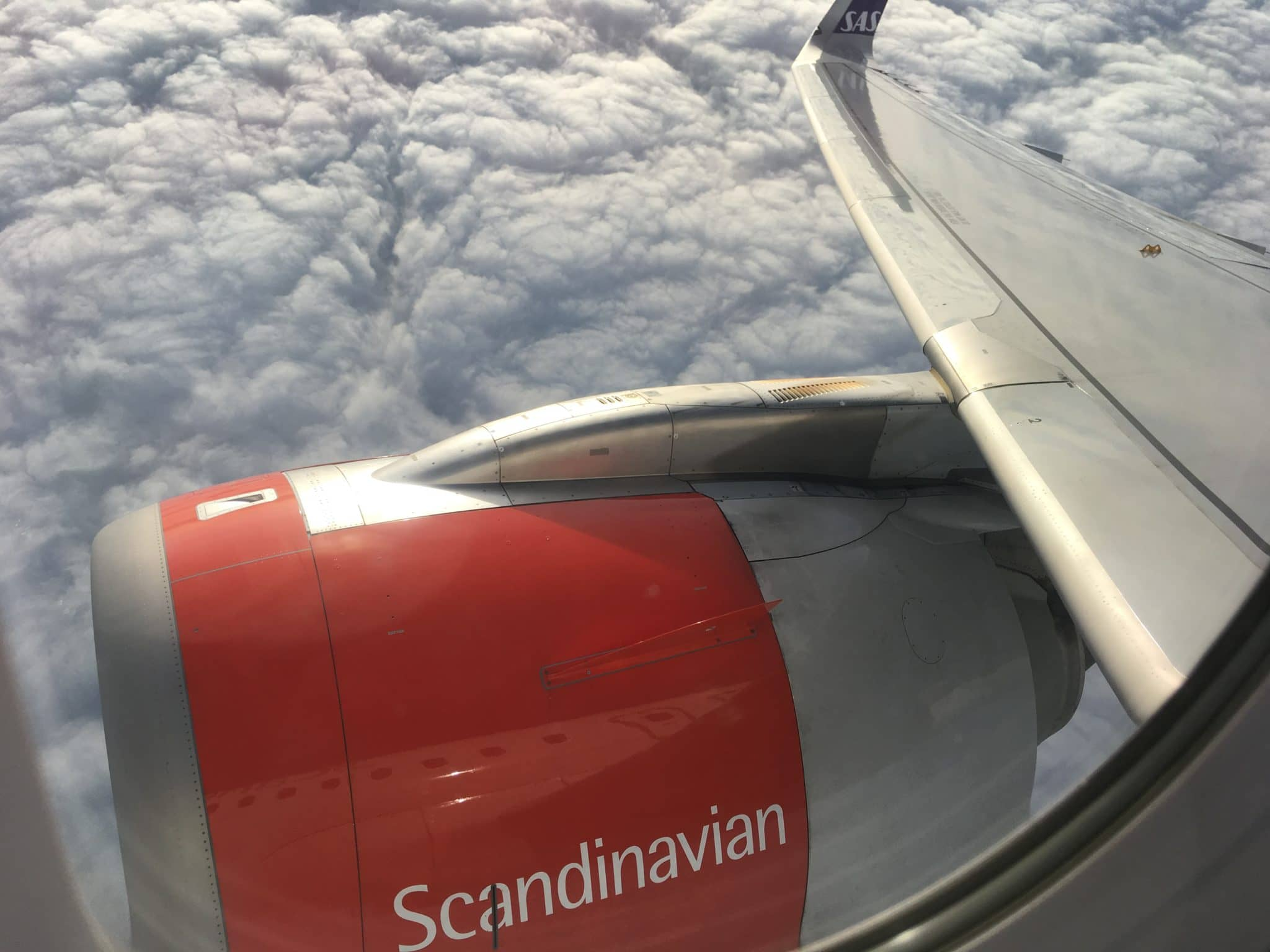 SAS Plus A320 NEO Wing View